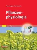 Pflanzenphysiologie (eBook, PDF)