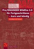 Pro/ENGINEER Wildfire 3.0 für Fortgeschrittene - kurz und bündig (eBook, PDF)