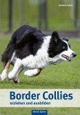 Border Collies erziehen und ausbilden