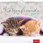 Für Katzenfreunde 2017