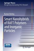 Smart Nanohybrids of RAFT Polymers and Inorganic Particles (eBook, PDF)