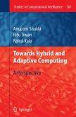 Towards Hybrid and Adaptive Computing (eBook, PDF)