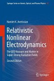 Relativistic Nonlinear Electrodynamics (eBook, PDF)