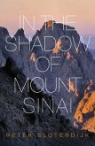 In The Shadow of Mount Sinai (eBook, ePUB)