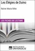 Les Élégies de Duino de Rainer Maria Rilke (eBook, ePUB)