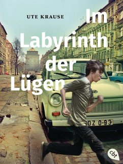 Im Labyrinth der Lügen (eBook, ePUB) - Krause, Ute