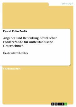 Angebot und Bedeutung öffentlicher Förderkredite für mittelständische Unternehmen (eBook, PDF)