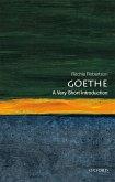 Goethe: A Very Short Introduction (eBook, PDF)