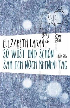 So wüst und schön sah ich noch keinen Tag (eBook, ePUB) - Laban, Elizabeth