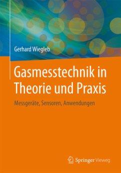 Gasmesstechnik in Theorie und Praxis - Wiegleb, Gerhard