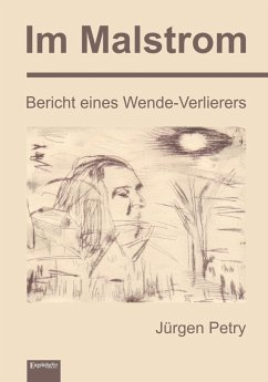 Im Malstrom (eBook, ePUB) - Petry, Jürgen