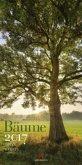 Bäume 2017
