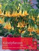 Kübelpflanzen (Mängelexemplar)