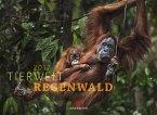 Tierwelt Regenwald 2017