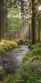 Mythos Wald 2017