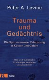 Trauma und Gedächtnis (eBook, ePUB)