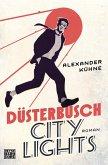 Düsterbusch City Lights / Düsterbusch Bd.1 (eBook, ePUB)