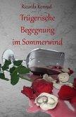 Trügerische Begegnung im Sommerwind (eBook, ePUB)