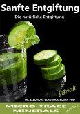 Sanfte Entgiftung (eBook, ePUB)