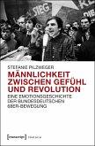 Männlichkeit zwischen Gefühl und Revolution (eBook, PDF)