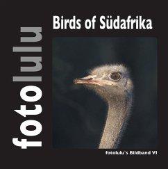 Birds of Südafrika (eBook, ePUB) - Fotolulu