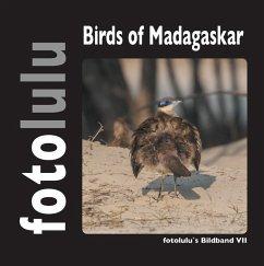 Birds of Madagaskar (eBook, ePUB)