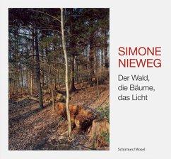 Der Wald, die Bäume, das Licht