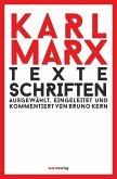 Texte Schriften (eBook, ePUB)