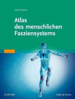 Atlas des menschlichen Fasziensystems - Stecco, Carla