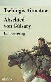 Abschied von Gülsary (eBook, ePUB)