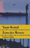 Zorn des Meeres (eBook, ePUB)