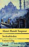 Seelenfrieden (eBook, ePUB)