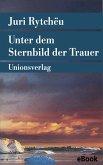 Unter dem Sternbild der Trauer (eBook, ePUB)