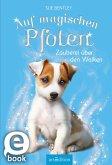Zauberei über den Wolken / Auf magischen Pfoten Bd.3 (eBook, ePUB)