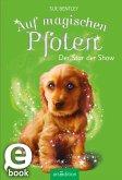 Der Star der Show / Auf magischen Pfoten Bd.4 (eBook, ePUB)