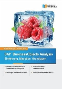 SAP BusinessObjects Analysis - Einführung, Migr...