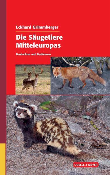 Die Säugetiere Mitteleuropas - Grimmberger, Eckhard