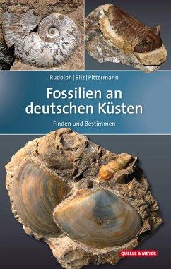 Fossilien an deutschen Küsten - Rudolph, Frank; Bilz, Wolfgang; Pittermann, Dirk