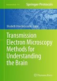 Transmission Electron Microscopy Methods for Understanding the Brain