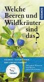 Welche Beeren und Wildkräuter sind das? (eBook, ePUB)