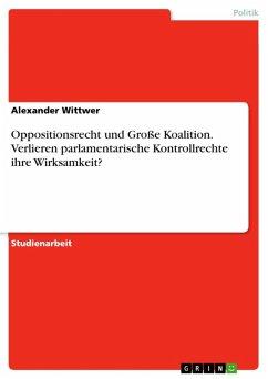 Oppositionsrecht und Große Koalition. Verlieren parlamentarische Kontrollrechte ihre Wirksamkeit? (eBook, ePUB)