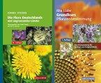 SCHMEIL-FITSCHEN: Die Flora Deutschlands und der angrenzenden Länder - Lüder: Grundkurs Pflanzenbestimmung