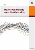 Prozessoptimierung unter Unsicherheiten (eBook, PDF)