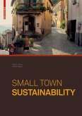 Small Town Sustainability (eBook, PDF)