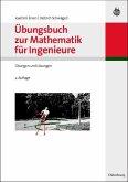 Übungsbuch zur Mathematik für Ingenieure (eBook, PDF)