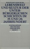 Lebenswelt und Kultur der unterbürgerlichen Schichten im 19. und 20. Jahrhundert (eBook, PDF)