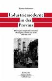 Industriemoderne in der Provinz (eBook, PDF)