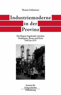 Industriemoderne in der Provinz (eBook, PDF) - Schlemmer, Thomas