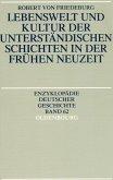 Lebenswelt und Kultur der unterständischen Schichten in der Frühen Neuzeit (eBook, PDF)