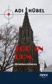 Tod in Ulm (eBook, ePUB)
